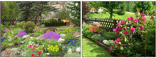 Immer Blühender Garten zimmer pension ferienzimmer in böckstein bad gastein landhaus